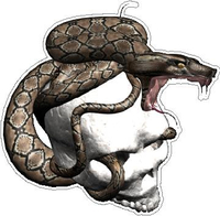 Snake Skull Decal / Sticker 03
