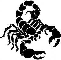 CUSTOM SCORPION DECALS and SCORPION STICKERS