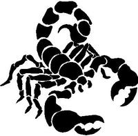 Scorpion Decal / Sticker 03