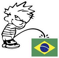 Z1 Pee On Brazilian Flag Decal / Sticker