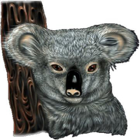 Koala Bear Decal / Sticker