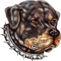 Rottweiler Decal / Sticker 03
