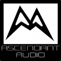CUSTOM ASCENDANT AUDIO DECALS and STICKERS