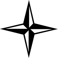 Star Decal / Sticker 24