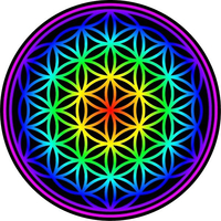 Flower of Life Decal / Sticker 03