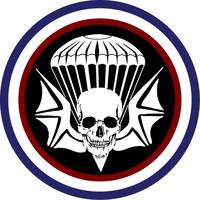 3-502nd Infantry Regiment Airborne Widowmaker Decal / Sticker 01