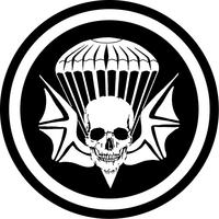 3-502nd Infantry Regiment Airborne Widowmaker Decal / Sticker 02