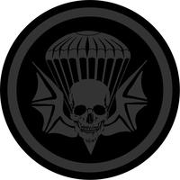 3-502nd Infantry Regiment Airborne Widowmaker Decal / Sticker 03