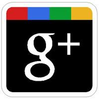 Google Plus Decal / Sticker