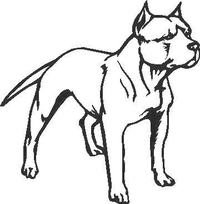 Pitbull Decal / Sticker 01