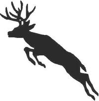 Buck Deer Decal / Sticker 05