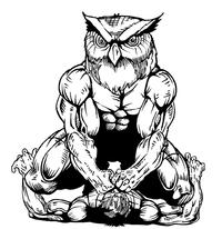 Wrestling Owls Mascot Decal / Sticker 1