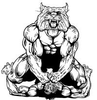 Wrestling Wildcats Mascot Decal / Sticker 1