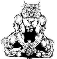 Wrestling Wildcats Mascot Decal / Sticker 1