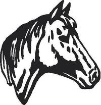 Horse Head Decal / Sticker