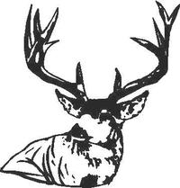 Buck Deer Decal / Sticker 07