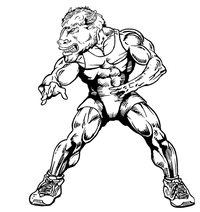 Wrestling Buffalo Mascot Decal / Sticker wr2
