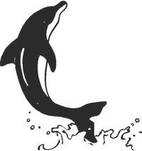 Dolphin Decal / Sticker 02