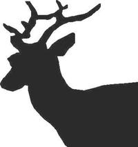 Buck Deer Decal / Sticker 02