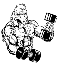 Weightlifting Gamecocks Mascot Decal / Sticker 5