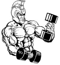 Weightlifting Paladins / Warriors Mascot Decal / Sticker 2