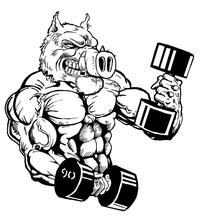 Weightlifting Razorbacks Mascots Decal / Sticker 1