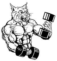 Weightlifting Wildcats Mascot Decal / Sticker 2