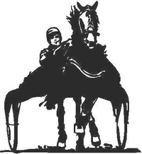 Harness Race Decal / Sticker 01