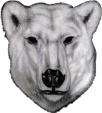 Polar Bear Decal / Sticker