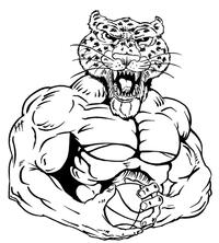 Basketball Leopards Mascot Decal / Sticker 4