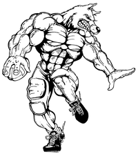Football Wolves Mascot Decal / Sticker 5
