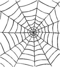 Spiderweb Decal / Sticker 02