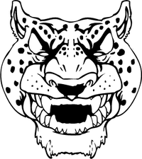 Cheetahs Head Mascot Decal / Sticker