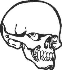 Skull Decal / Sticker 08