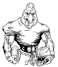 Football Gamecocks Mascot Decal / Sticker 9