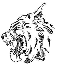 Wildcats Mascot Decal / Sticker 3