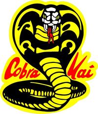 Cobra Kai Karate Kid Decal / Sticker 02