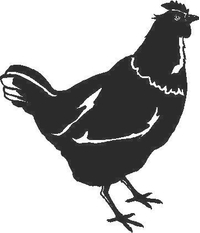 Chicken Decal / Sticker 02