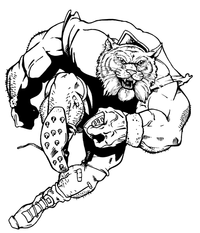 Football Wildcats Mascot Decal / Sticker 5