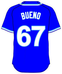 67 Francisley Bueno Royal Blue Jersey Decal / Sticker