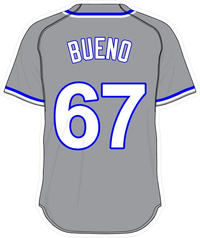 67 Francisley Bueno Gray Jersey Decal / Sticker