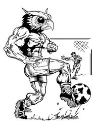 Soccer Owls Mascot Decal / Sticker 1
