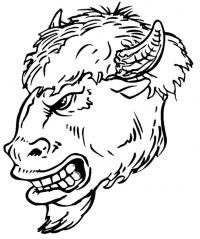 CUSTOM BUFFALO MASCOT DECALS AND BUFFALO MASCOT STICKERS
