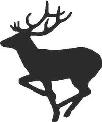 Buck Deer Decal / Sticker 04