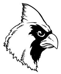 Cardinals Mascot Decal / Sticker 2