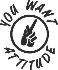 You Want Attitude Decal / Sticker