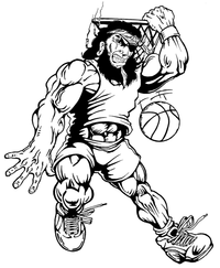 Basketball Pirates Mascot Decal / Sticker 2