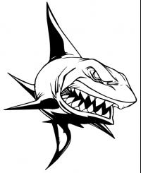 CUSTOM SHARKS MASCOT DECALS AND SHARKS MASCOT STICKERS
