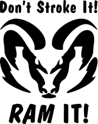 Don't Stroke It, RAM It Decal / Sticker