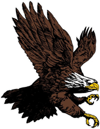 Attack Eagle Decal / Sticker 13